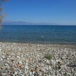 Agios Andreas 01