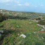 Chrisokellaria-Stavros