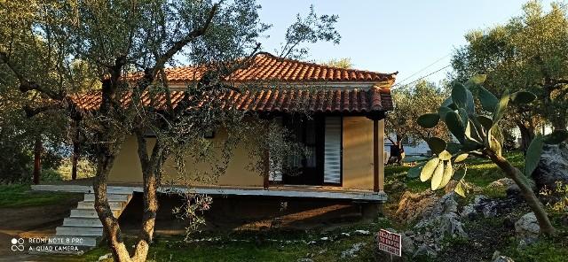 House in Logga 04